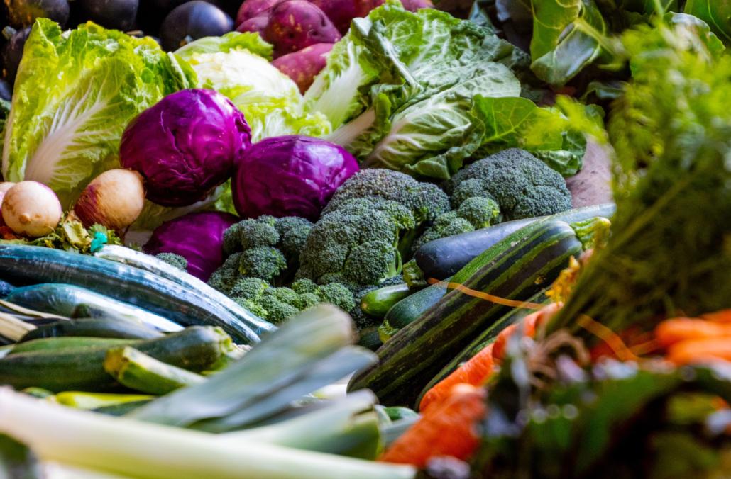 povrće, cvijeće, egzotično i začinsko bilje